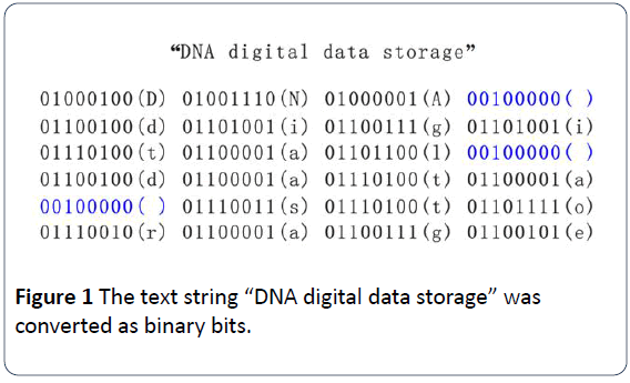 hsj-DNA-digital-data-storage