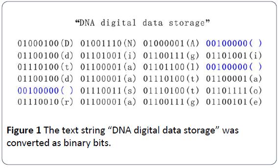 hsj-DNA-digital-data-storage