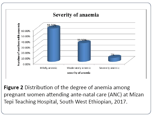 Prevalence of Anemia and its Associated Factors among Pregnant Women
